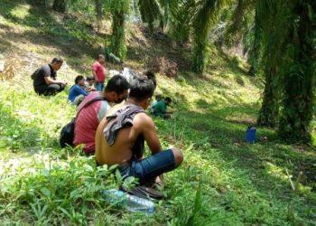 Tampak para preman yang dituding disewa PT SRA menguasai kebun sawit milik masyarakat. (foto: istimewa)